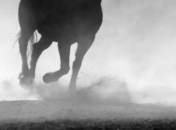 patas_caballo